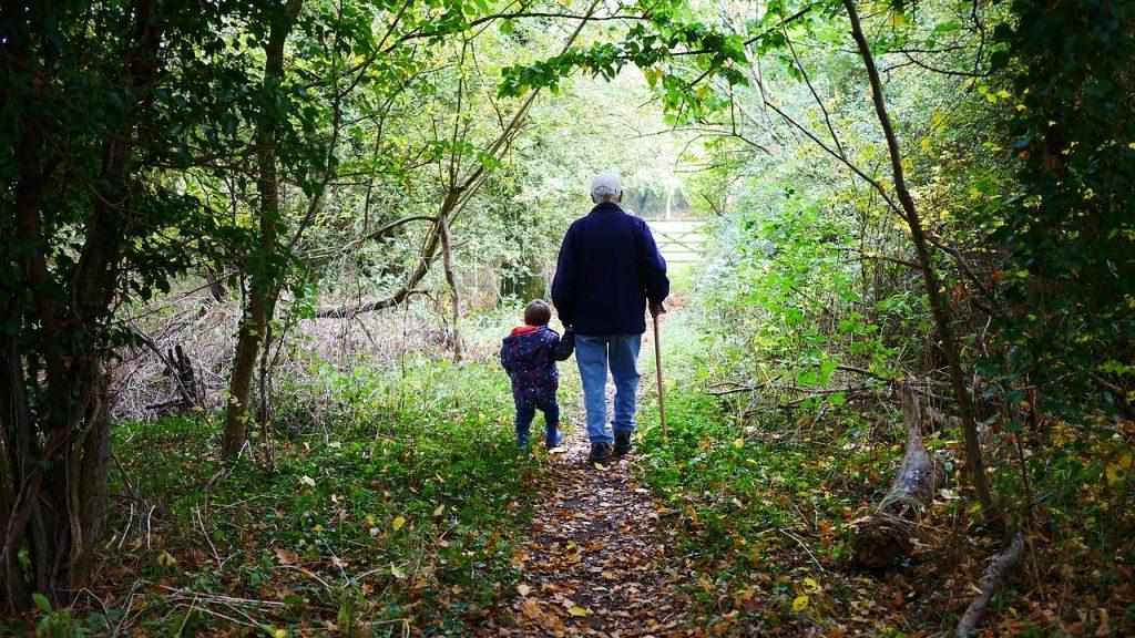 grandparents, walk, old